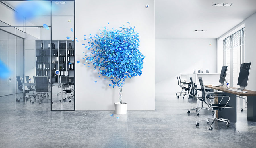 Office Space Concept with Ambiq Face Blue Plant