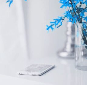 Smartphone on a table next to blue plant