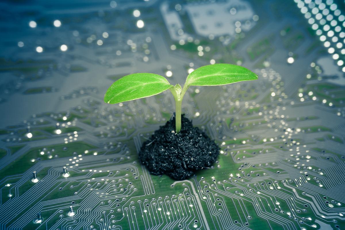 Sustainable Electronics Lifecycle Management